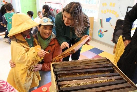 Integra y SAG lanzan libro infantil que explora el mundo de las abejas y su importancia para el medioambiente