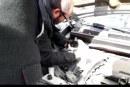 Pequeño gato quedó atrapado al interior de motor de vehiculo estacionado en el centro de Putaendo