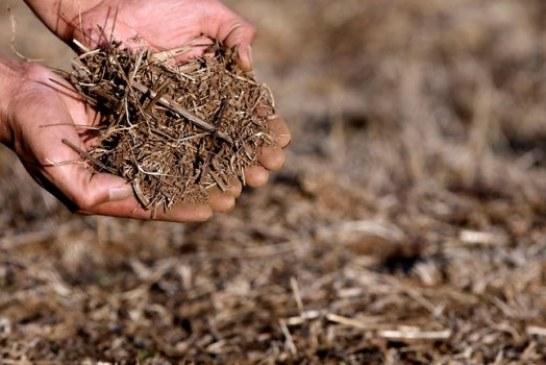 Experto: Es muy difícil que la sequía en Chile se pueda revertir; se va a ir profundizando