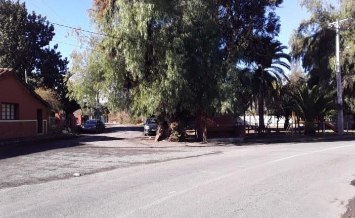 Hasta mercadería roban en modesta vivienda de Quebrada Herrera