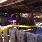 12.OOO litros de agua, y      mercadería llevaron vecinos de las Coimas a Crianceros de Putaendo