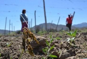 Presidente de la República decreta zona de catástrofe por sequía todas las comunas de la Región de Valparaíso